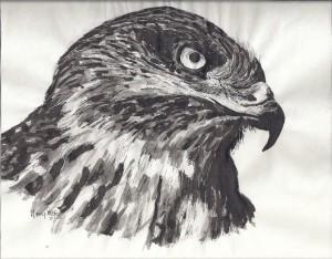 Eagle head 1971